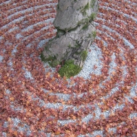 Fallen leaves fill the grooves of the sand garden in Kōmyōzenji (November 2010)