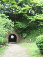 A tunnel on the grounds of Dazaifu Tenmangū Shrine. Beyond it is the mountain road up to Kamado Shrine. (April 2016)