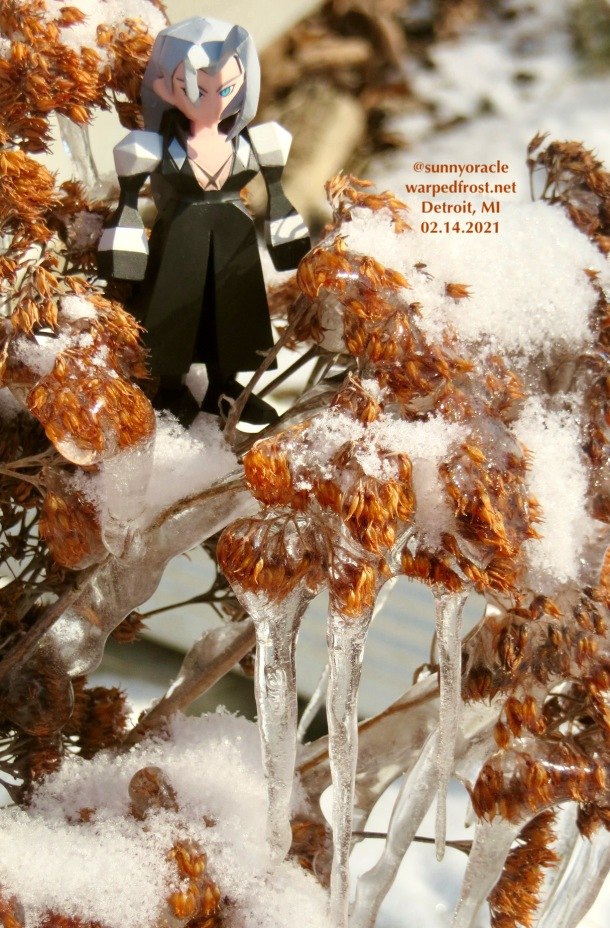 A Polygon Figure of Sephiroth in the same frozen sedum. The sun was really shining through the icicles in this shot.